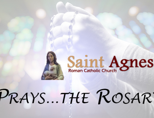 St Agnes Prays…the Rosary